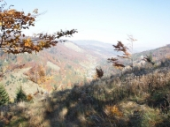 See the autumn in our mountains